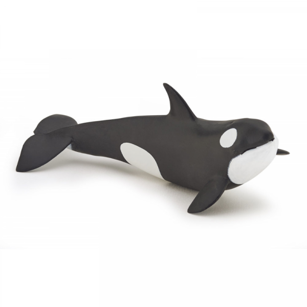Pui balena ucigasa Papo