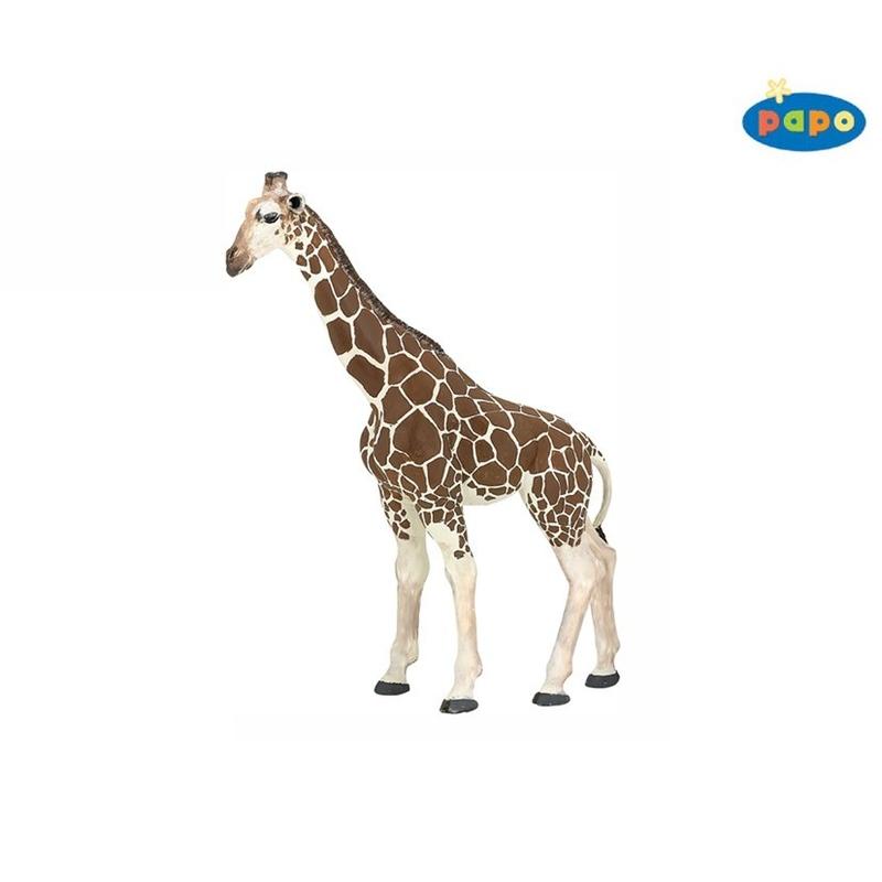 Girafa Papo imagine hippoland.ro